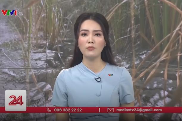 Miền Tây căng mình chống hạn - mặn   VTV24